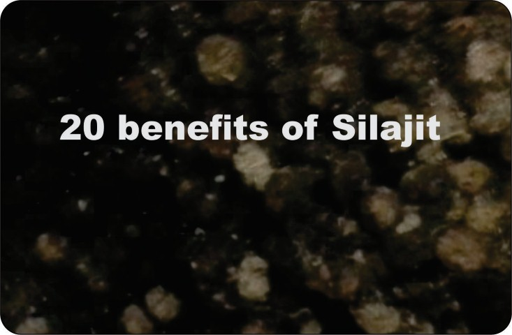 20 benefits of silajit for human being